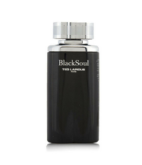 ted-lapidus-black-soul-for-men-edt-100ml